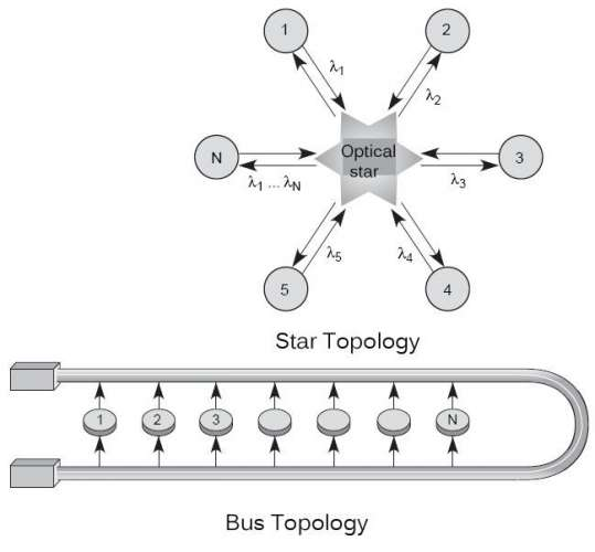 Star and Bus topology