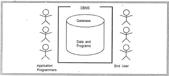 What is DBMS? Advantages and Disadvantages of DBMS.