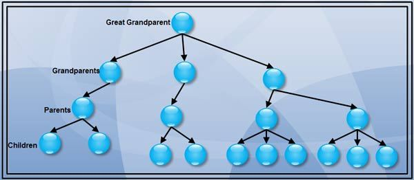 Structure of a Family Hierarchical